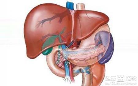 肝硬化的症狀是什麼原因引起的