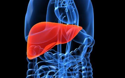 什麼人會得脂肪肝 哪些人容易得脂肪肝 脂肪肝的高危人群
